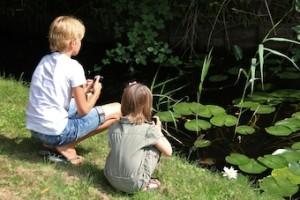 Kikkers fotograferen Met je smartphone het bos in
